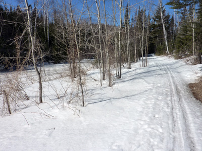Skiing Silver Bay: The best first K on the shore