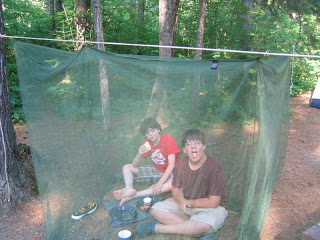ARGH! Camping in the bugs