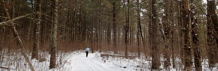 Enjoy lake-effect snow on Brule's Afterhours Ski Trails