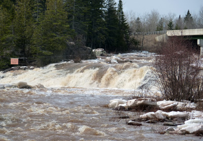 North Shore rivers are at their peak!
