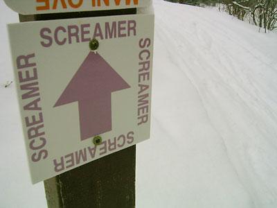 A Screamer, literally