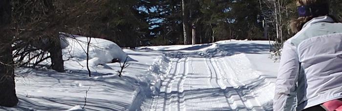 Gooseberry Falls makes for classic North Shore ski